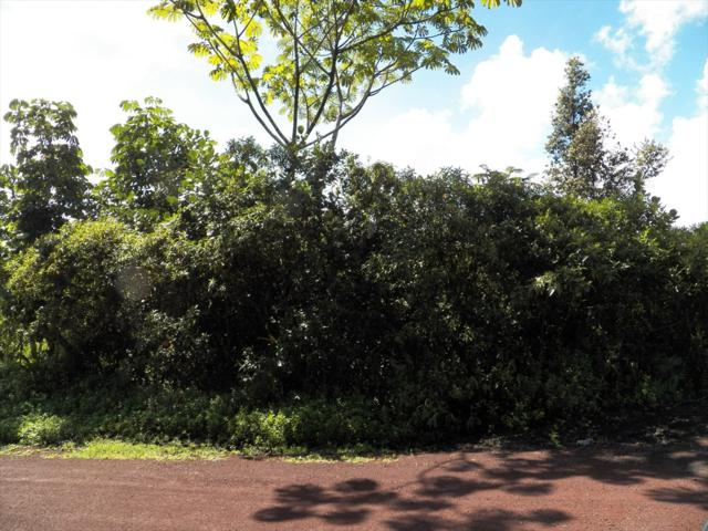 4TH AVE, Keaau, HI 96749 (MLS #622772) :: Aloha Kona Realty, Inc.