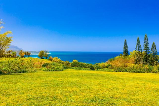 3700 Kilauea Rd, Kilauea, HI 96754 (MLS #625515) :: Elite Pacific Properties
