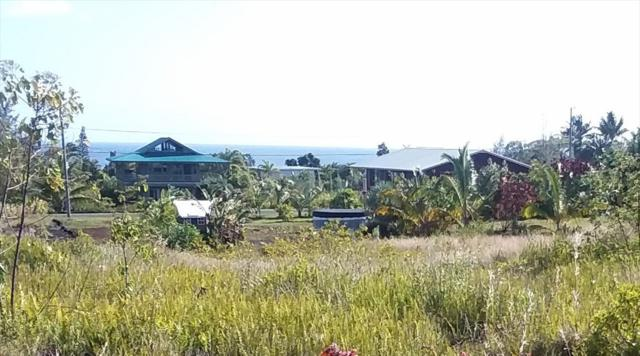 12-7119 Waioleka St, Pahoa, HI 96778 (MLS #625568) :: Aloha Kona Realty, Inc.