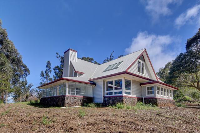 44-2960 Kula Kahiko Rd, Paauilo, HI 96776 (MLS #625667) :: Aloha Kona Realty, Inc.