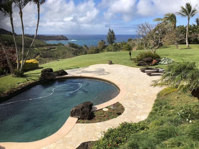 4170 North Waiakalua St, Kilauea, HI 96754 (MLS #625926) :: Elite Pacific Properties