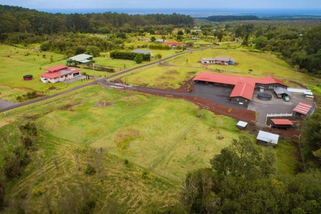 1009 Kulaloa Rd, Hilo, HI 96720 (MLS #626428) :: Song Real Estate Team/Keller Williams Realty Kauai