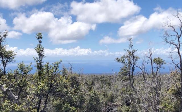 Road To The Sea, Naalehu, HI 96737 (MLS #627055) :: Song Real Estate Team/Keller Williams Realty Kauai