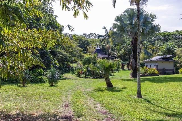 13-178 Kamaili Rd, Pahoa, HI 96778 (MLS #628108) :: LUVA Real Estate