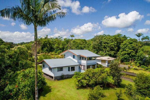50 Alani St, Hilo, HI 96720 (MLS #628328) :: Elite Pacific Properties