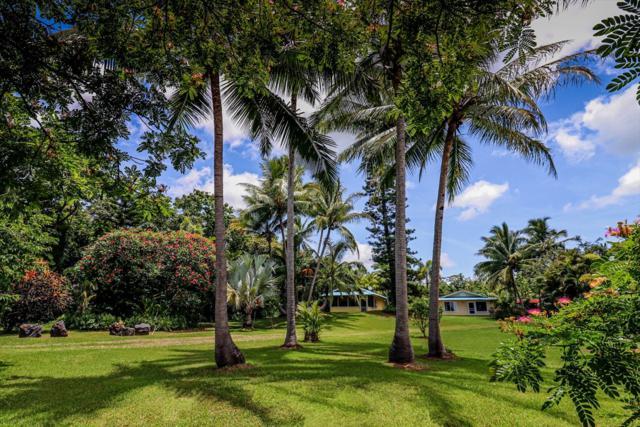 13-119 Nalu Pl, Pahoa, HI 96778 (MLS #629283) :: Aloha Kona Realty, Inc.