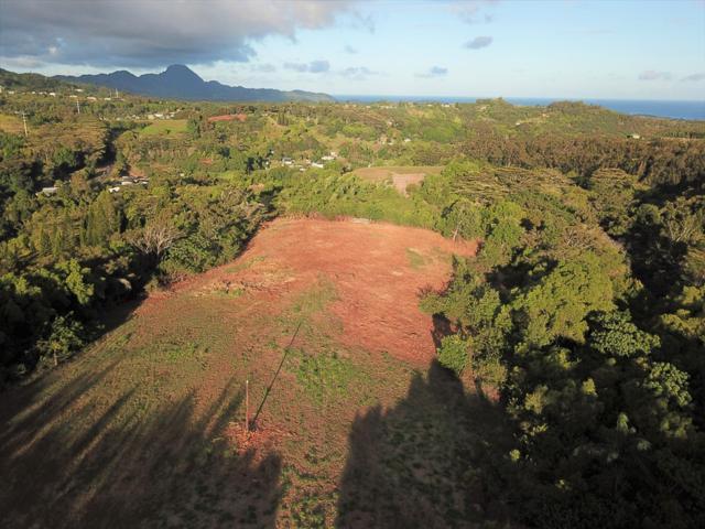 Kaumualii Hwy, Kalaheo, HI 96741 (MLS #629712) :: Aloha Kona Realty, Inc.