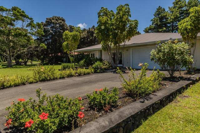 99-7807 Kaekaha Pl, Volcano, HI 96718 (MLS #629804) :: Elite Pacific Properties