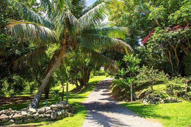 55-3576 Soares Rd, Kapaau, HI 96755 (MLS #630416) :: LUVA Real Estate