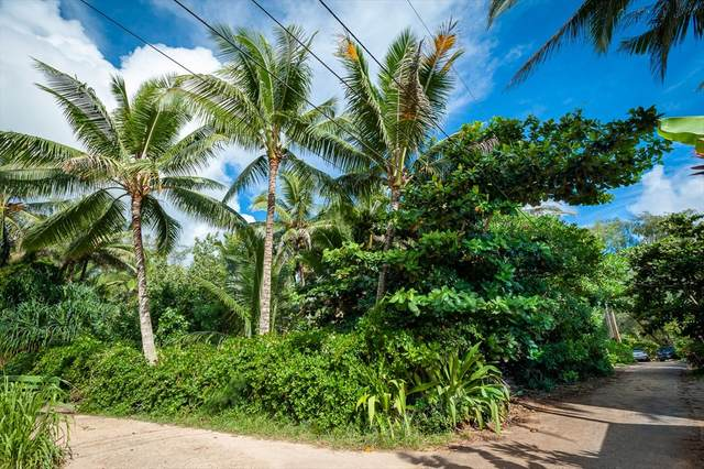3532 Moloaa Rd, Anahola, HI 96703 (MLS #631534) :: Elite Pacific Properties