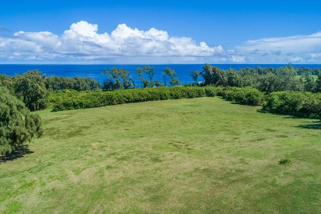 53-4223 Pratt Rd, Kapaau, HI 96755 (MLS #632287) :: LUVA Real Estate