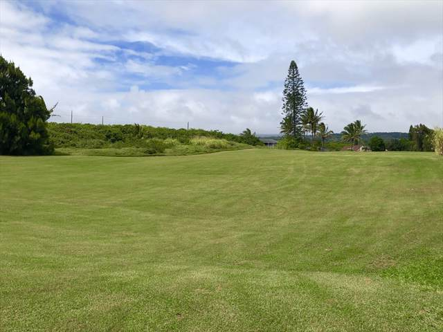 Address Not Published, Naalehu, HI 96772 (MLS #632624) :: Elite Pacific Properties