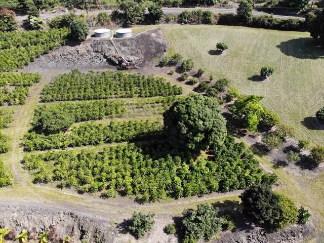 Mamalahoa Hwy, Captain Cook, HI 96704 (MLS #633177) :: Elite Pacific Properties