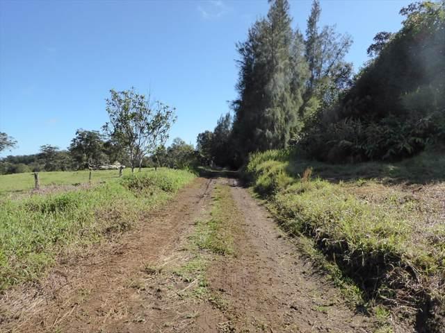 Puaono Rd, Honokaa, HI 96727 (MLS #634186) :: LUVA Real Estate