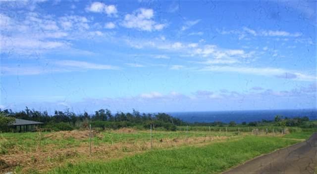 54-579 Honomakau Rd, Kapaau, HI 96755 (MLS #635045) :: Aloha Kona Realty, Inc.