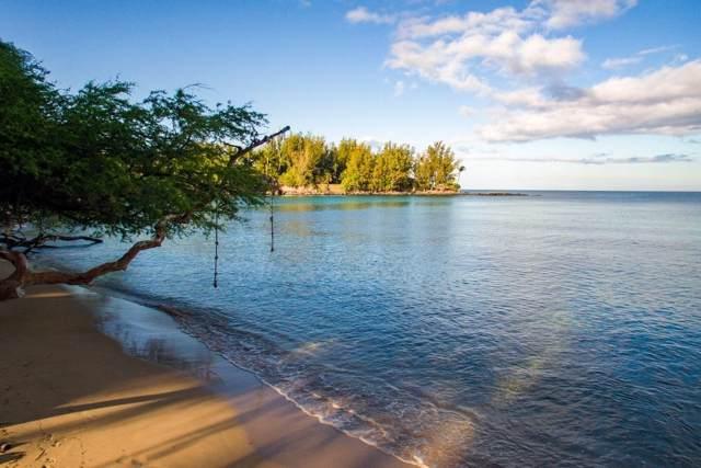 66-1400 Alakea, Kamuela, HI 96743 (MLS #635358) :: Elite Pacific Properties