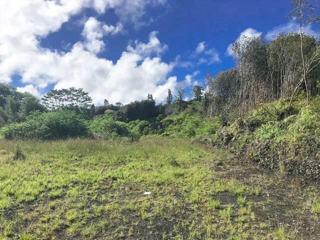 Huina Rd, Mountain View, HI 96771 (MLS #635571) :: Iokua Real Estate, Inc.