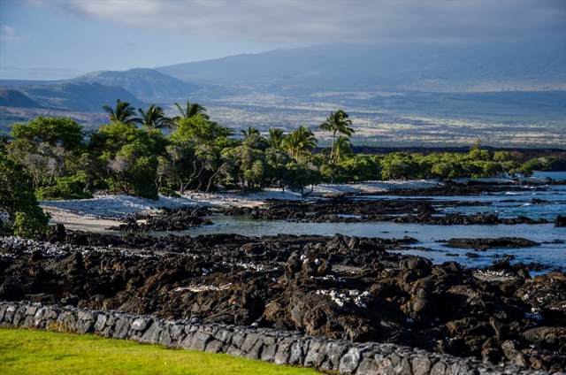 Naupaka Kai Pl, Waikoloa, HI 96743 (MLS #636013) :: Steven Moody