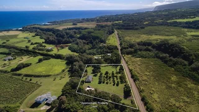 53-4411 Akoni Pule Hwy, Kapaau, HI 96755 (MLS #636700) :: Song Real Estate Team | LUVA Real Estate