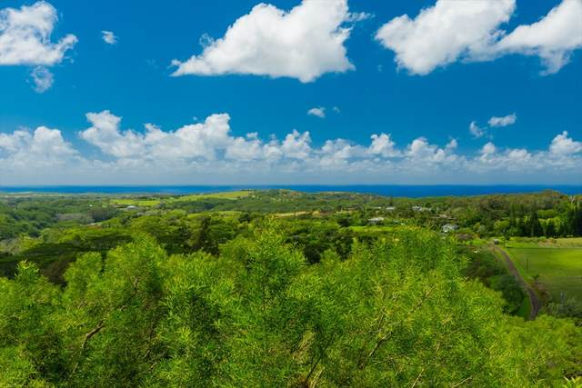 4560-R Uha Rd, Lawai, HI 96765 (MLS #637173) :: Kauai Exclusive Realty