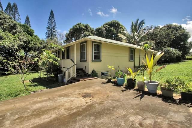 55-422 Hawi Rd, Hawi, HI 96719 (MLS #637812) :: LUVA Real Estate