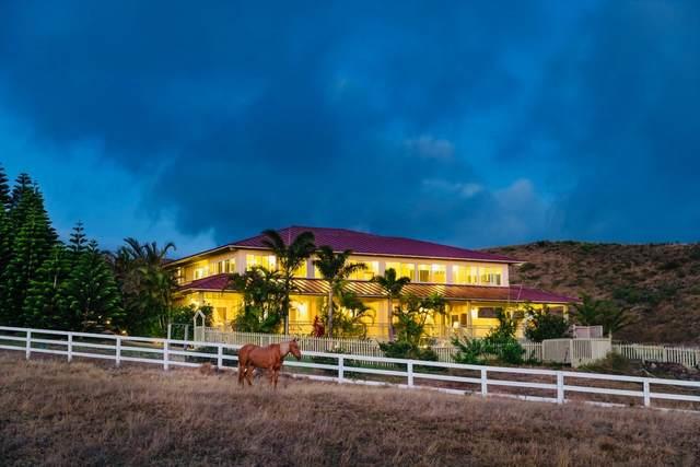 59-246 Lehiwa St, Kamuela, HI 96743 (MLS #638906) :: Elite Pacific Properties