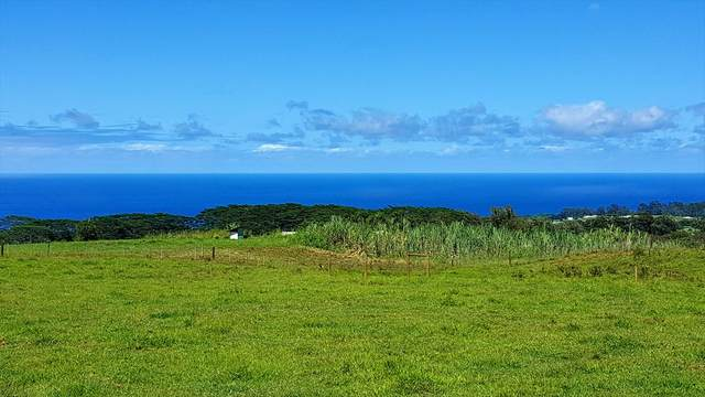 Kaiwiki Homestead, Hakalau, HI 96710 (MLS #638932) :: Corcoran Pacific Properties