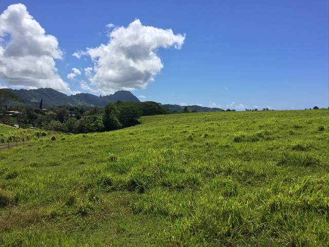 Omao Rd, Koloa, HI 96756 (MLS #639044) :: Elite Pacific Properties