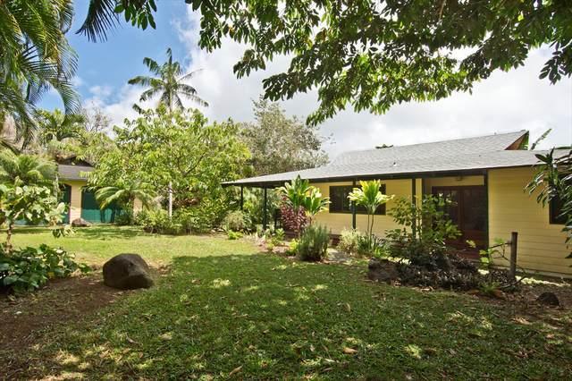 55-716 Hawi Hill Rd, Hawi, HI 96719 (MLS #639559) :: LUVA Real Estate