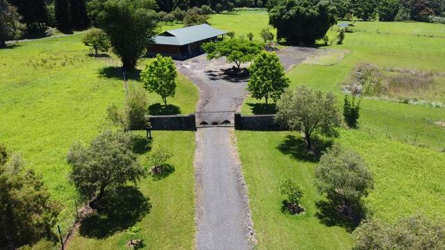 29-2400 Kaiwiki Hmstd Rd, Hakalau, HI 96710 (MLS #639770) :: Song Team | LUVA Real Estate