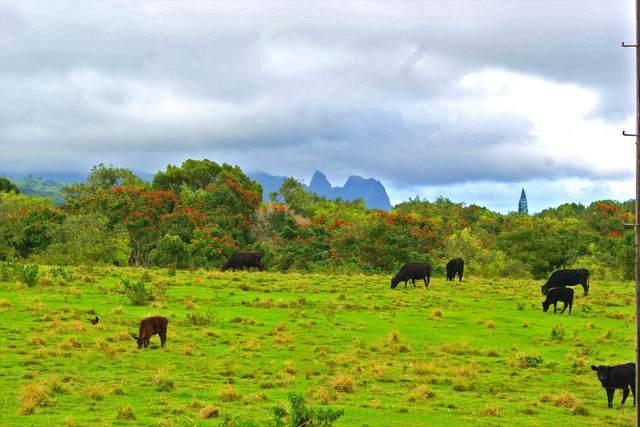 6273 Waipouli Rd, Kapaa, HI 96746 (MLS #640058) :: Kauai Exclusive Realty