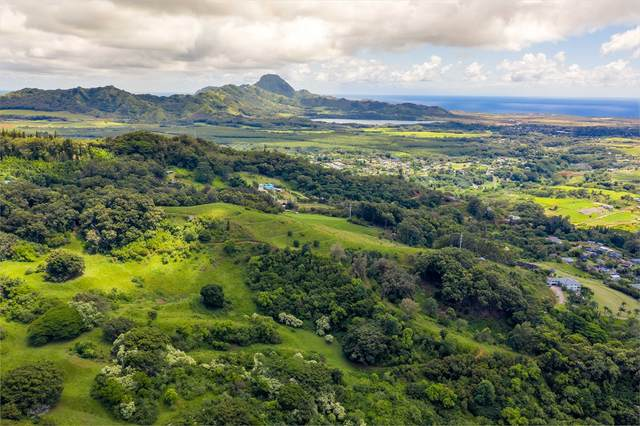 Uha Rd, Lawai, HI 96765 (MLS #641772) :: Kauai Exclusive Realty