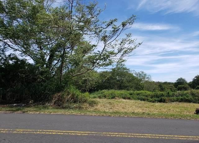 Address Not Published, Naalehu, HI 96772 (MLS #642741) :: Iokua Real Estate, Inc.