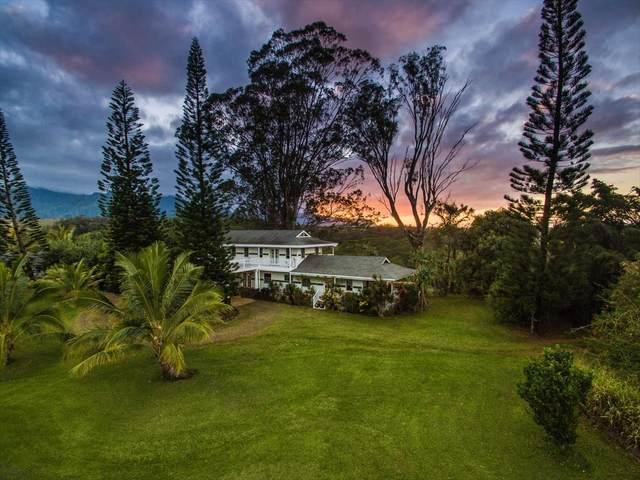 5150 Kahiliholo Rd, Kilauea, HI 96754 (MLS #642979) :: Kauai Exclusive Realty