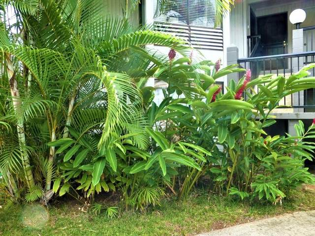 4121 Rice St, Lihue, HI 96766 (MLS #644159) :: Kauai Exclusive Realty