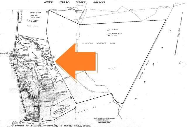5495-A Puulima Rd, Kalaheo, HI 96741 (MLS #646078) :: Kauai Exclusive Realty