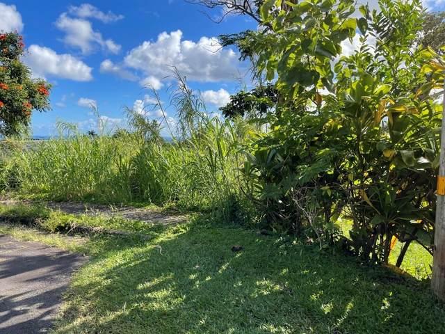 Alahelenui St, Hilo, HI 96720 (MLS #646300) :: Aloha Kona Realty, Inc.