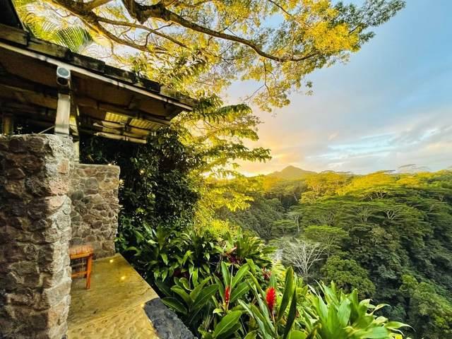6543 Kuamoo Rd, Kapaa, HI 96746 (MLS #647020) :: Kauai Exclusive Realty