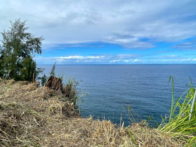 Hawaii Belt Rd, Ninole, HI 96780 (MLS #649099) :: LUVA Real Estate