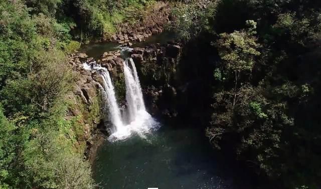 32-301 Wailele Rd, Papaaloa, HI 96780 (MLS #649494) :: Corcoran Pacific Properties