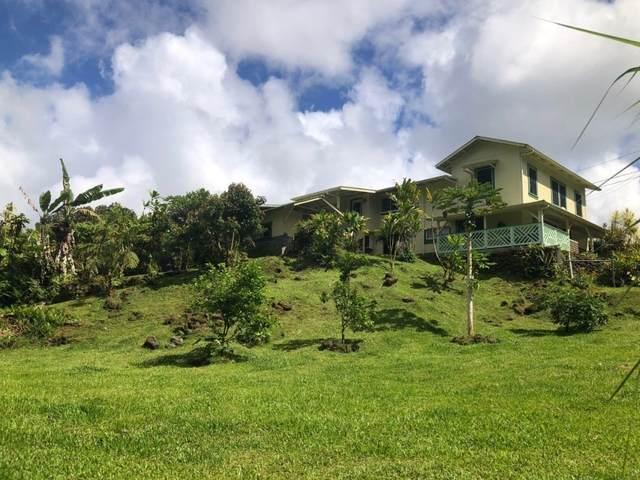 15-1638 Akeakamai Lp, Pahoa, HI 96778 (MLS #649561) :: Steven Moody