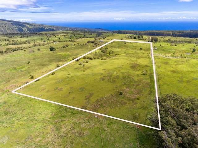 West Waikoekoe, Honokaa, HI 96727 (MLS #650394) :: Hawai'i Life