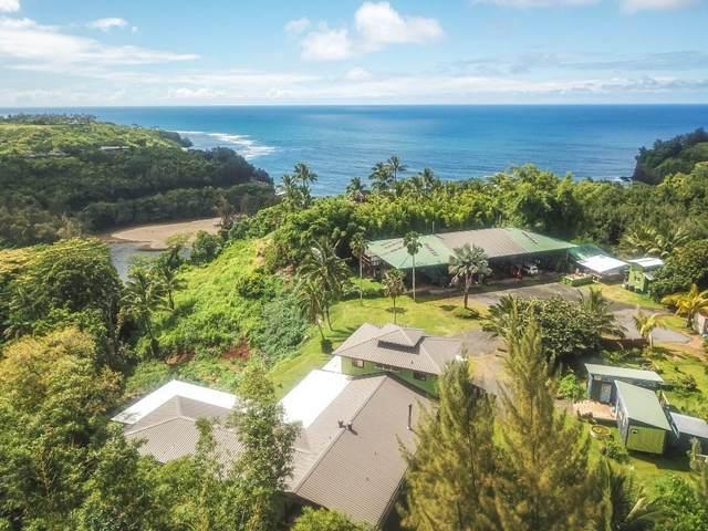 5-3000 Kuhio Hwy, Kilauea, HI 96754 (MLS #650653) :: Corcoran Pacific Properties