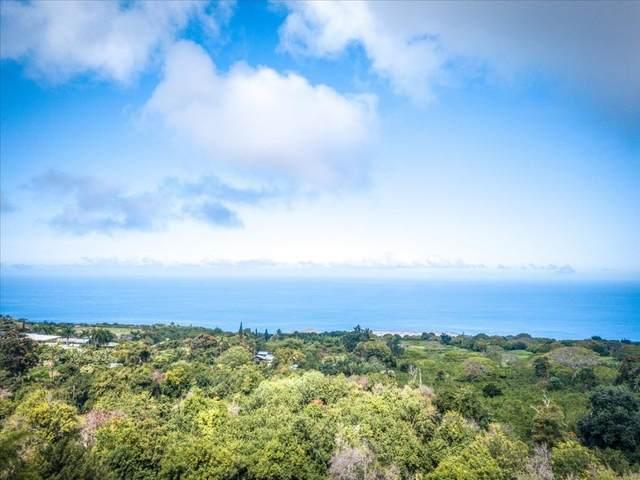 79-7568 Hawaii Belt Rd, Kealakekua, HI 96750 (MLS #651051) :: LUVA Real Estate
