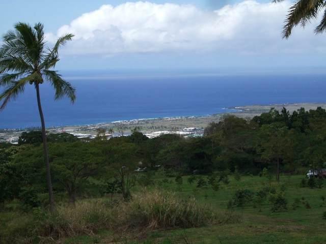 75-5302 Mamalahoa Hwy, Holualoa, HI 96725 (MLS #651316) :: Corcoran Pacific Properties