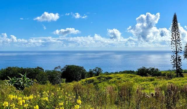 32-2471 Stone Road, Papaaloa, HI 96780 (MLS #651331) :: Corcoran Pacific Properties