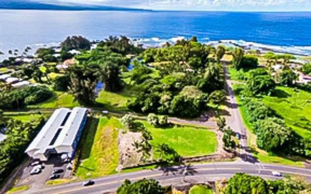 176 Apapane Rd, Hilo, HI 96720 (MLS #651853) :: LUVA Real Estate