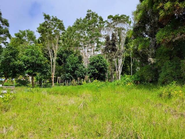 Maunanani Pl, Volcano, HI 96718 (MLS #652441) :: Corcoran Pacific Properties