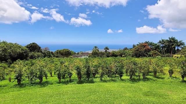 75-5533-A Kealia St, Holualoa, HI 96725 (MLS #653117) :: LUVA Real Estate