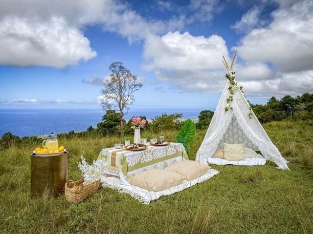 76-5811 Hookahi Rd, Holualoa, HI 96725 (MLS #653876) :: LUVA Real Estate